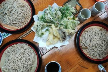 やまびこ|修善寺|季節の天ぷらと一緒に手打ちそばを。