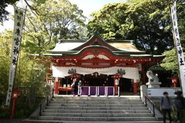 来宮神社|熱海|樹齢2千年!御神木をぐるっと回ってパワーチャージを。