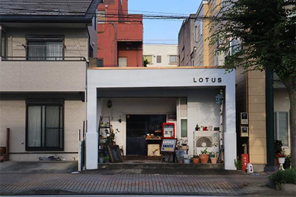 LOTUS SWEETS (ロータススイーツ)|沼津の焼き菓子店